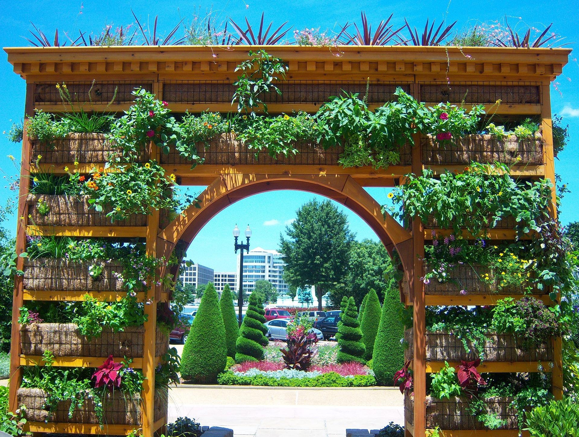 Fabriquer Treillis Bois Pour Plantes Grimpantes idées de support pour plantes grimpantes
