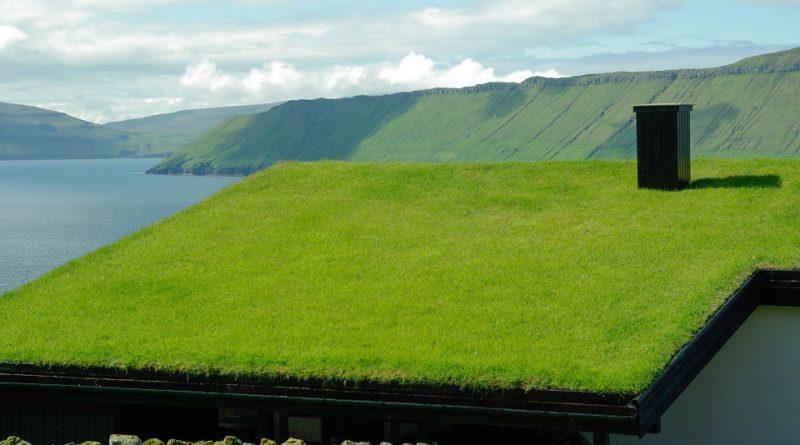 Ce qui est bon à savoir sur la toiture végétalisée
